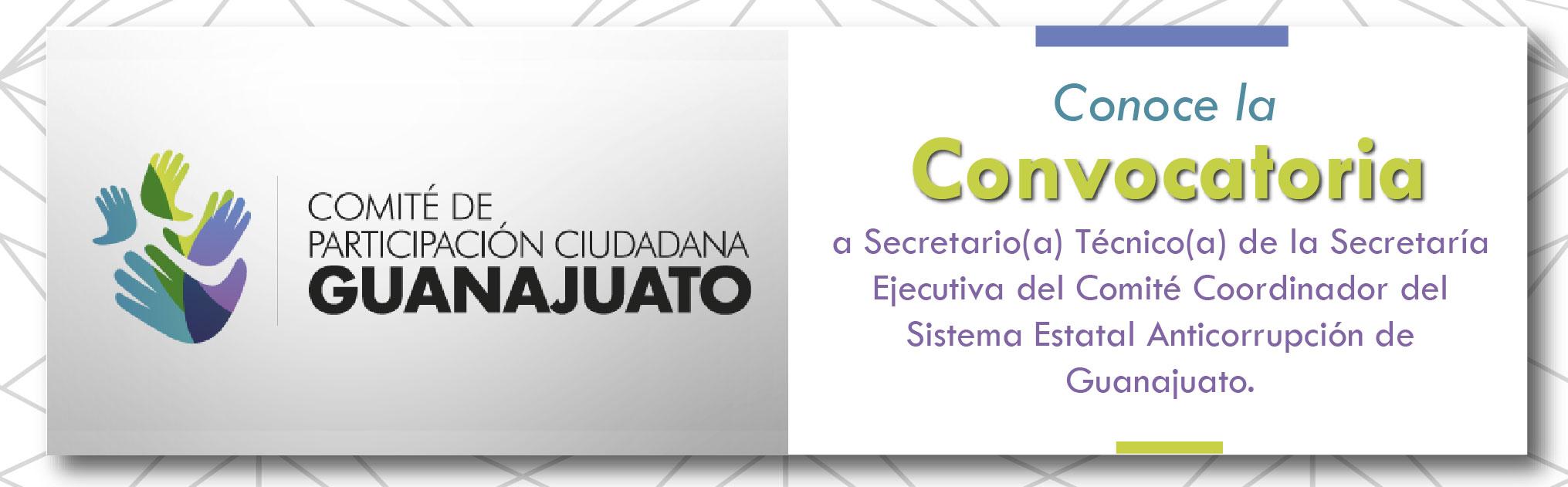 BANER COMITE CONVOCATORIA-01-2