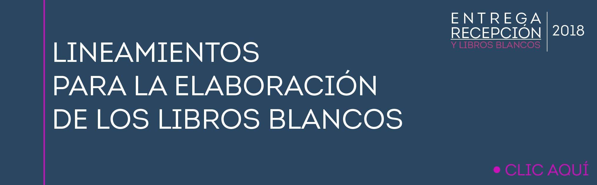 BANER LIBROS BLANCOS-01